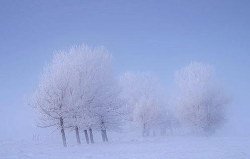 winter, landscape, frost, Alberta, snow, fog, Dan Jurak, Travel Alberta,