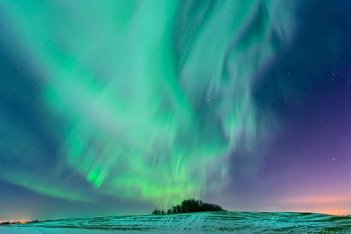 aurora borealis, northern lights, Dan Jurak, Alberta, snow, winter,