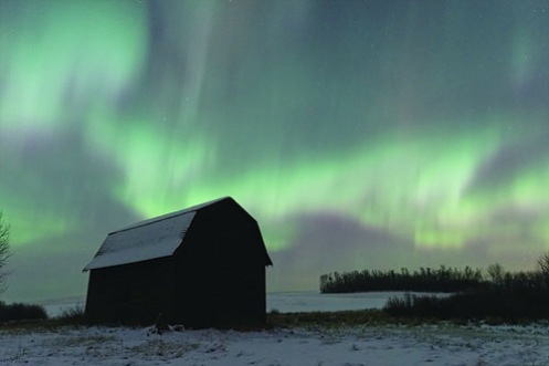 barn, winter, aurora borealis, aurora, northern lights, Alberta, landscape, Dan Jurak,