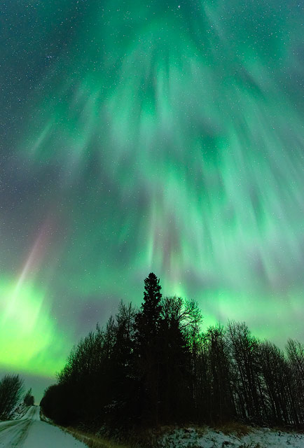 aurora, aurora borealis, northern lights, winter, night, night sky, Dan Jurak,