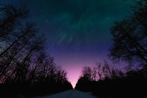 night sky, aurora, Alberta, stars, Dan Jurak, landscape,