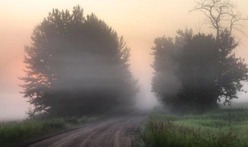 Alberta, fog, prairie, landscape, dan jurak,