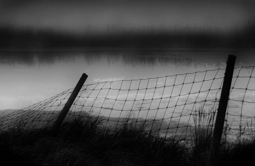 landscape, Dan Jurak, pond, slough, black and white, fineart, fine art, minimalist, fog, foggy, Alberta, Travel Alberta,