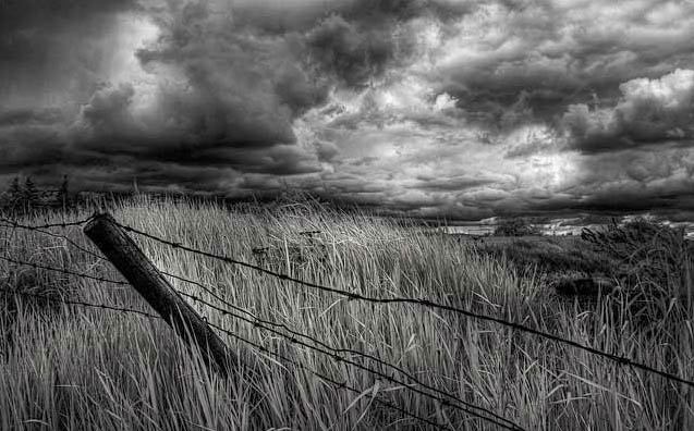Infrared Landscape Photography Black And White