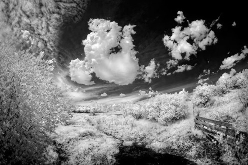 infrared, black and white, fineart, high key, landscape, summer, Dan Jurak, Alberta, clouds, pond, pasture, rural, Dan Jurak, infrared, surreal,