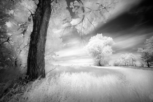 infrared, landscape, dan jurak, alberta, prairie, long exposure, black and white, fine art, fineart,