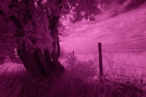 RAW infrared
