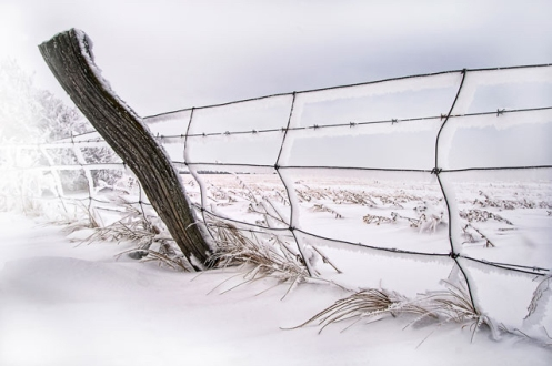 snow, high key, winter, hoar frost, fence, barbed wire fence, Alberta, landscape, Dan Jurak,