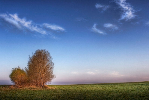 landscape, prairie, Dan Jurak, spring, summer, evening, father daughter, father son, Alberta, prairie, color,