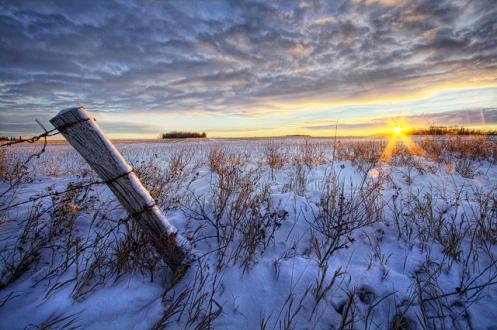 prairie, landscape, Dan Jurak, winter, sunrise, barbed wire, prairie, Alberta,