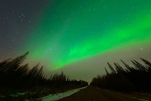 aurora borealis, northern lights, spring, Alberta, landscape, Dan Jurak, back roads, country roads, spruce forest,