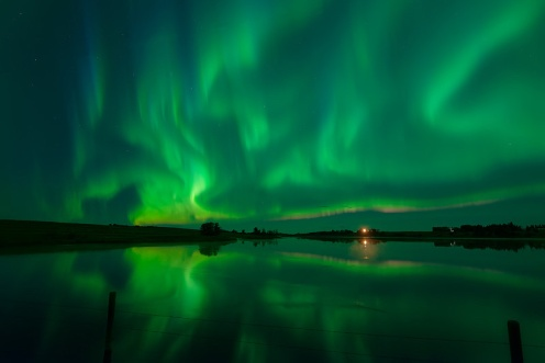 aurora borealis, aurora, northern lights, prairie, green, stars, night sky, reflection, long exposure, Dan Jurak, Alberta, night, astrophotography