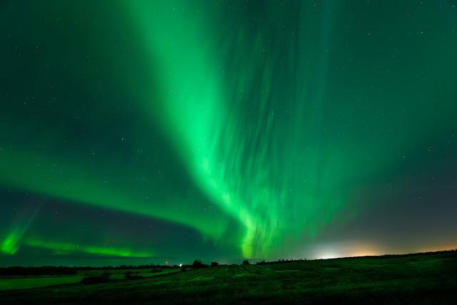 aurora borealis, aurora, northern lights, Alberta, night sky, astrophotography, Dan Jurak, landscape, Alberta, prairie, rural, green, crops,