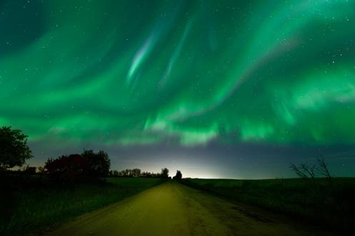 aurora, aurora borealis, northern lights, night sky, long exposure, astrophotography, Nikon Canada, gravel road, prairie, landscape, Dan Jurak, rural, autumn, road,
