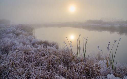 frost, hoar frost, autumn, landscape, sunrise, dawn, prairie, slough, reflection, cold, snow, ice, Dan Jurak, editing,