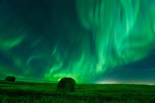 aurora borealis, aurora, northern lights, dan jurak, landscape, nightscape, Alberta, Canada, hay, bales, farm, stars, learning, rut,