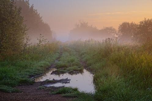 landscape, dan jurak, foggy, summer, farm, rural, morning, dawn, prairie, travel alberta, moody