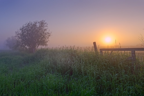 landscape, spirituality, dan jurak, alberta, prairie, sunrise, foggy, farm, rural, misty, lush,