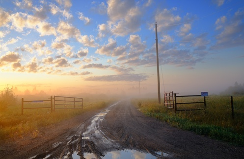 Alberta, landscape, foggy morning, fog, foggy, prairie, farm, rural, horizontal, Dan Jurak, road, fence, misty,