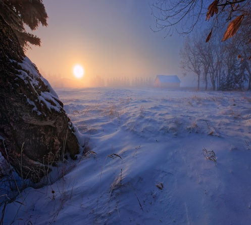 moody, winter, landscape, prairie, foggy, fog, snow, sunrise, dawn, Alberta, farm, Dan Jurak,