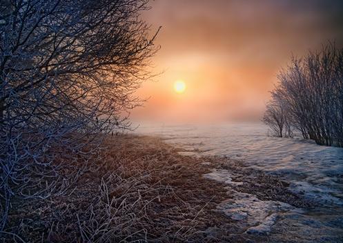 creativity, mindfulness, landscape, spring, foggy, fog, morning, Dan Jurak,Alberta,